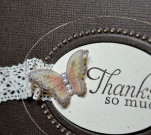 AWW Sep - Papillon Closeup