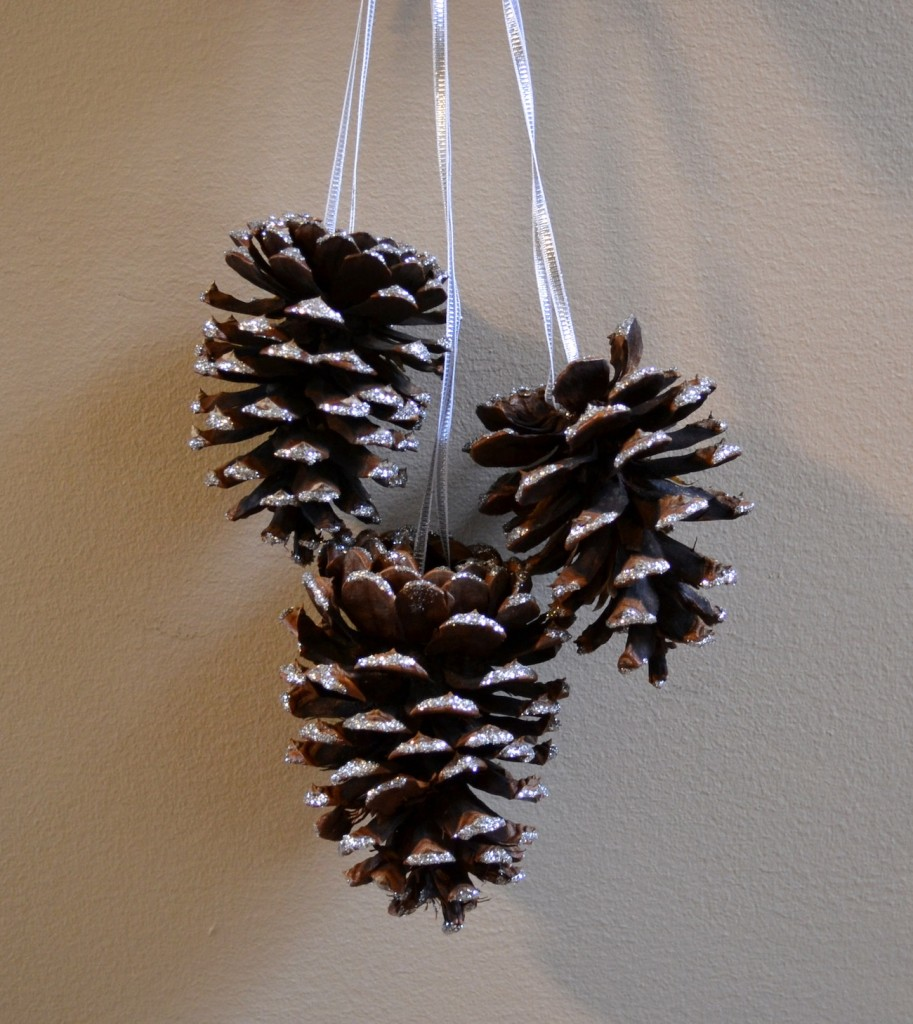 Nov FB - Glittered Pinecones