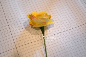 AWW Mar - Flower How To 2